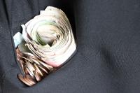 Die Taschen voller Geld