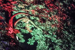 Feuerwerk und Lasershow im Lindenhofer Park