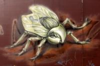 Das Insekt mit den hübschen Augen - kunstvolles Graffiti in Berlin-Friedrichshain