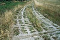 Lochplatten des Kolonnenweges der innerdeutschen Grenze