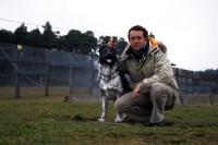 zu Gast am Point Alpha, Hundelaufanlage der Grenzsperranlagen