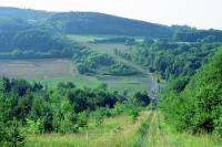 Kolonnenweg an der ehemaligen deutsch-deutschen Grenze, Grünes Band in Thüringen