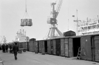 Güterwaggons im Hafen von Rostock, DDR, 50er Jahre