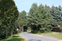 Der Weg von Strausberg nach Eggersdorf zum Kinderferienlager