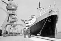 Das ägyptische Schiff