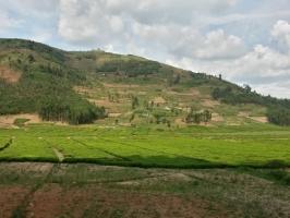 Reise durch durch Ruanda