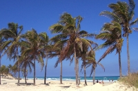 Karibik-Feeling pur