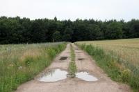 Feldweg im östlichen Brandenburg