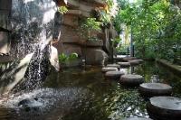 Wasser, Fische, Felsen und viel Grün im Tropenhaus des Botanischen Gartens Berlin