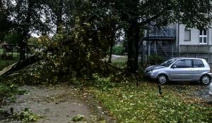 """Sturmschäden durch Orkan """"Xavier"""""""