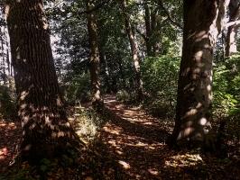 Wandern in der Uckermark
