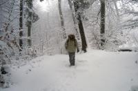Winterspaziergang in der Schweiz