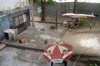 Schlichter Garten in einem Randbezirk von Rio de Janeiro