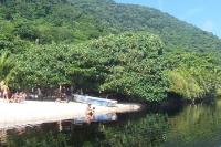 Idylle an einem Teich im Bundesstaat Rio de Janeiro