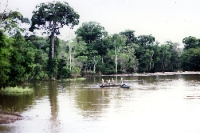 Fischer auf dem Amazonas bei Anori und Manaus