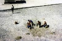 Männer zupfen in der Mittagshitze Unkraut in Belém