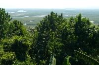 Regenwald und Feuchtgebiete bei Grumari im Bundesstaat Rio de Janeiro