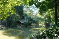 im Jardim Botânico von Rio de Janeiro