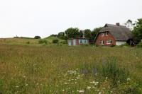 Landschaft auf der Ostseeinsel Hiddensee
