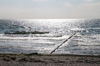 Ostseestrand auf der Insel Hiddensee