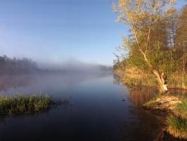 Peenewiesen bei Gützkow
