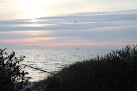 Blick auf die Ostsee von Hiddensee aus
