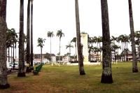 Parkanlage mit Palmen in Cayenne, Französisch-Guyana