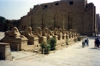 Karnak-Tempel bei Luxor