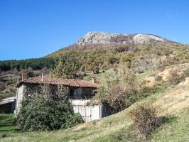 Pelin in Bulgarien