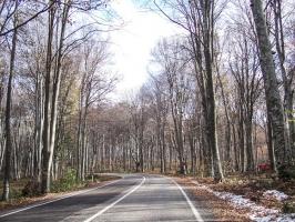 Straße zum türkisch-bulgarischen Grenzübergang