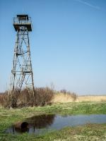 Ungarischer Grenzposten am Neusiedler See