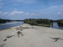 am Ufer der Drau (Drave / Dráva))