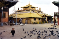 Gandan Kloster in Ulaanbaatar