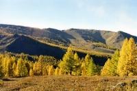 herbstliche Landschaft um Ulaanbaatar / Ulan Bator