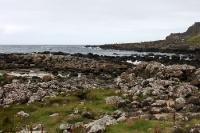 Basaltsäulen am Giants Causeway an der nordirischen Nordküste, Nordirland
