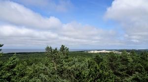 Blick von Aussichtsplattform auf die Dünenlandschaft