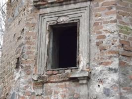 Burg in Wyszyna