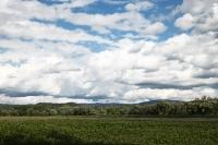 Gebirgsvorland des Riesengebirges (Karkonosze)