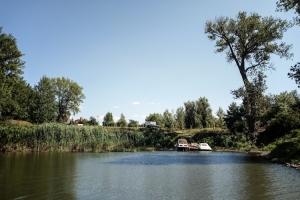 Ufer der Oder bei Hohenwutzen / Cedynia