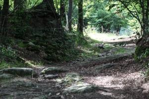 Weg zur Zamek Henryka