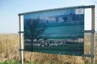 am einstigen Eisernen Vorhang an der Grenze zwischen Österreich und Ungarn