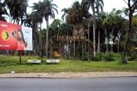 Palmentuin in Paramaribo, Suriname