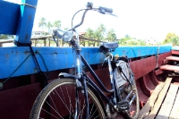 Mit dem Fahrrad unterwegs in Suriname, Südamerika
