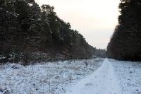 Winterlandschaft bei Münchehofe bei Berlin