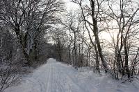 Winterlicher Weg von Altlandsberg nach Werneuchen