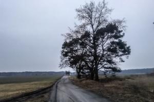 Landschaft bei Schmachtenhagen