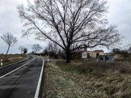Landstraße nach Neulangsow