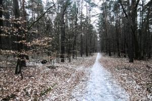 Wandern zum Mühlenbecker Land