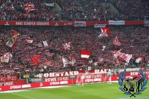 1. FC Köln vs. Hamburger SV
