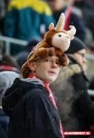 1. FC Köln vs. SC Freiburg